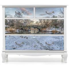 Naklejka na meble - Central Park, New York City in winter