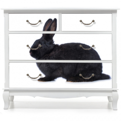 Naklejka na meble - Black rabbit on white background
