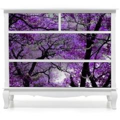 Naklejka na meble - purple spring