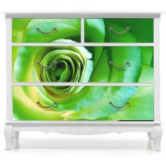 Naklejka na meble - green rose
