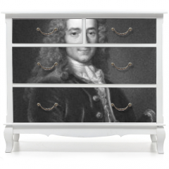 Naklejka na meble - Voltaire