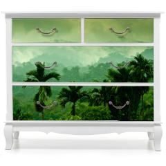 Naklejka na meble - Selva de Sumatra