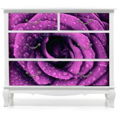 Naklejka na meble - Purple dark rose background