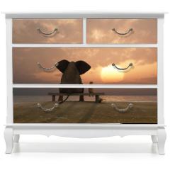 Naklejka na meble - elephant and dog sit on a summer beach