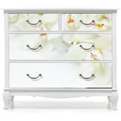 Naklejka na meble - Orchid Flowers