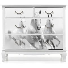 Naklejka na meble - white horses in dust