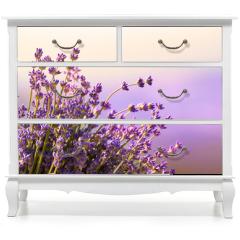 Naklejka na meble - Lavender flowers bloom summer time