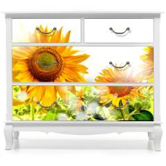 Naklejka na meble - kwiaty