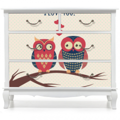Naklejka na meble - Vector colorful illustration with two owls in love