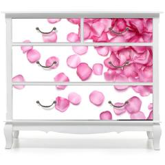 Naklejka na meble - Petals of pink rose