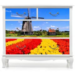 Naklejka na meble - Vibrant tulips with windmill, Netherlands