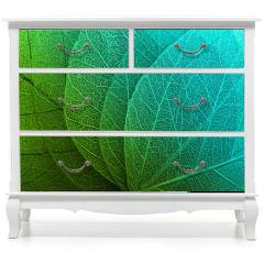 Naklejka na meble - Macro leaves background
