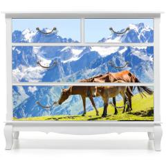 Naklejka na meble - Horse in mountains