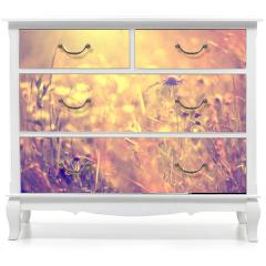 Naklejka na meble - Blurry vintage meadow background