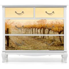 Naklejka na meble - Vineyard Rain