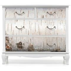 Naklejka na meble - White birch bark, close up background texture
