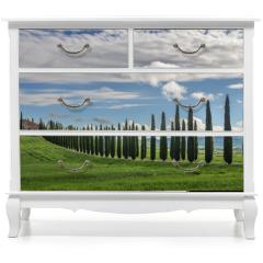 Naklejka na meble - Avenue of cypresses