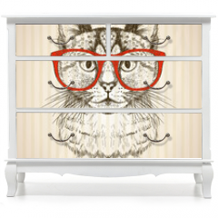 Naklejka na meble - Vintage graphic poster with hipster cat with red glasses.