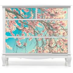 Naklejka na meble - Wiosenny kwiat
