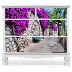 Naklejka na meble -  Tętniąca życiem ścieżka kwiatowa w Capri, Włochy