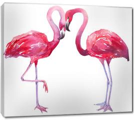 Obraz na płótnie canvas - watercolor illustration of a flamingo