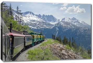 Obraz na płótnie canvas - White Pass & Yukon Route Railroad