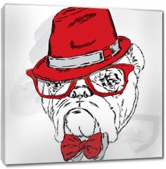 Obraz na płótnie canvas - Funny bulldog vector. Bulldog wearing a hat with glasses and tie.