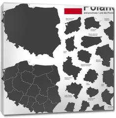 Obraz na płótnie canvas - country Poland and voivodeships