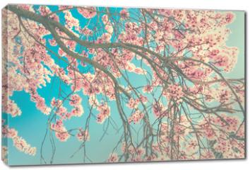 Obraz na płótnie canvas - Spring blossom
