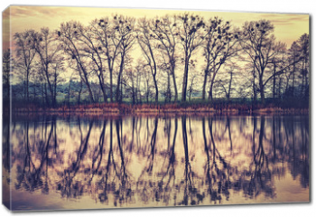 Obraz na płótnie canvas - Vintage toned tree silhouettes reflected in a lake.