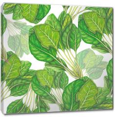 Obraz na płótnie canvas - Seamless pattern of hand drawn spinach
