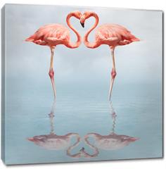 Obraz na płótnie canvas - making love