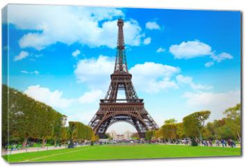 Obraz na płótnie canvas - The Eiffel Tower