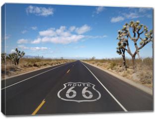 Obraz na płótnie canvas - Route 66 Mojave Desert