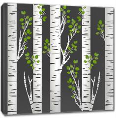 Obraz na płótnie canvas - Birch trunks in night