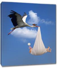 Obraz na płótnie canvas - Stork & Baby