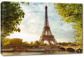 Obraz na płótnie canvas - Paris