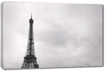 Obraz na płótnie canvas - Eiffel tower in Paris, France