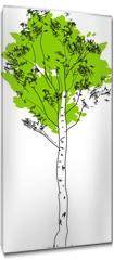 Obraz na płótnie canvas - Stylized birch tree with green crown and white trunk