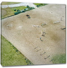 Obraz na płótnie canvas - Aerial view part of the racecourse in Kiev with a horse and people. Photo from the drone