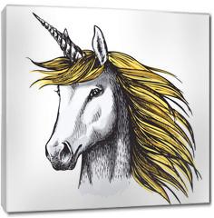 Obraz na płótnie canvas - Unicorn horse sketch of fairy or heraldic animal