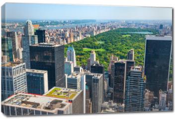 Obraz na płótnie canvas - New York skyline and Central Park