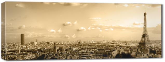 Obraz na płótnie canvas - les toits de paris