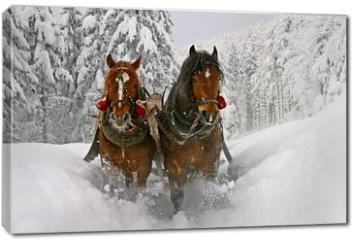 Obraz na płótnie canvas - sleigh ride