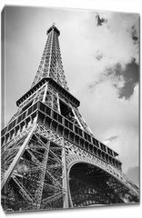 Obraz na płótnie canvas - The Eiffel tower, Paris France