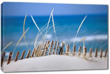 Obraz na płótnie canvas - lake sand dunes