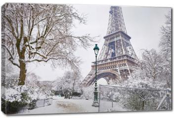 Obraz na płótnie canvas - Scenic view to the Eiffel tower on a day with heavy snow