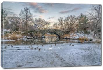 Obraz na płótnie canvas - Central Park, New York City in winter