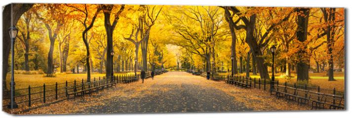 Obraz na płótnie canvas - Herbst Panorama im Central Park in New York City, USA