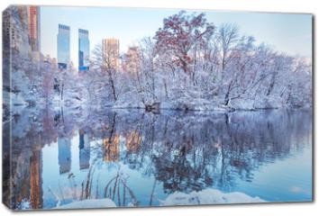 Obraz na płótnie canvas - Central Park. New York. USA in winter covered with snow